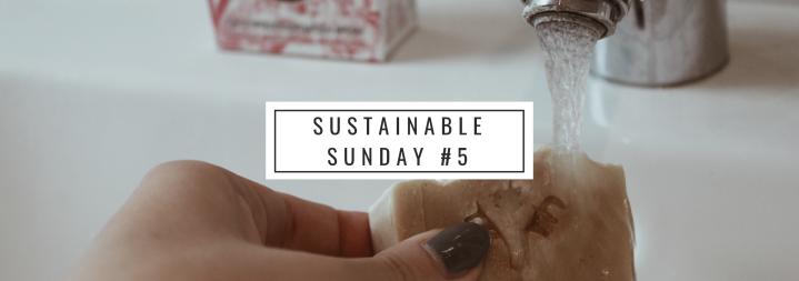 Nachhaltige Gesichtsreinigung – Öl-Seife bei öligerHaut?