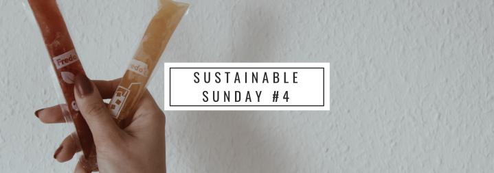Sustainable Sunday #4 Vegan durch dieEis-Saison?