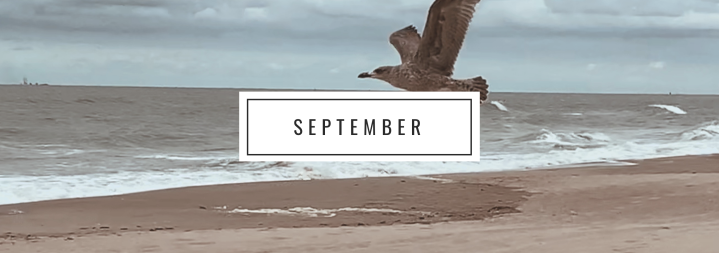 My month in Bullet Points 🍁September